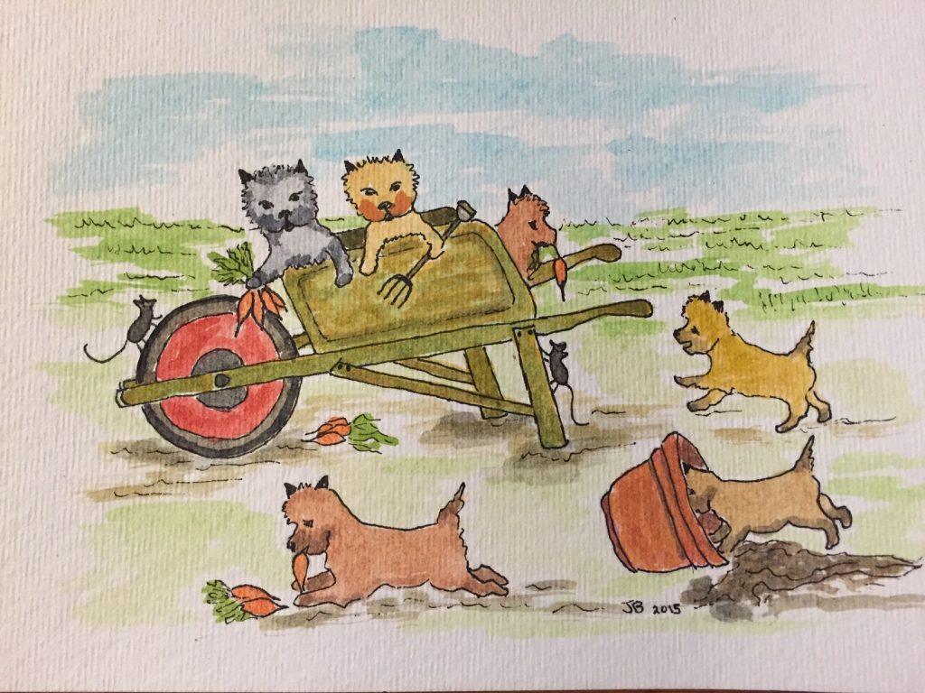 Cairn Terrier Rescue